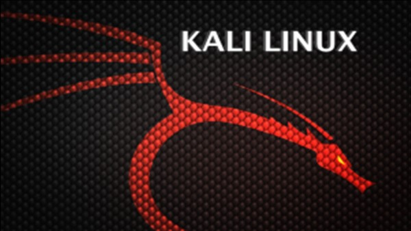 Install Kali Linux Hacking Computers